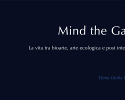 sito_mind-the-gap-la-vita-tra-bioarte-arte-ecologica-e-post-internet-postmedia-books-copia